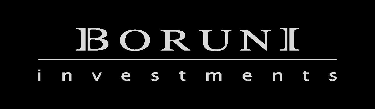 Boruni Investments